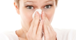 Hausstaubmilben Allergie